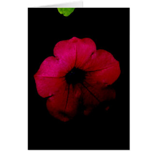 Flor aniversário-cor-de-rosa Portuguesa-feliz Cartão Comemorativo