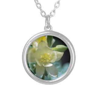 Flor aquilégia bonito e significado colar com pendente redondo