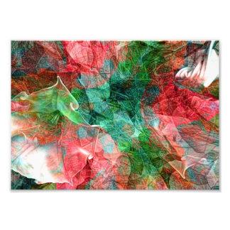 Flor branca abstrata impressão de foto