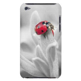 Flor branca bonito com capa de telefone vermelha