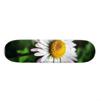Flor branca da margarida skate personalizado
