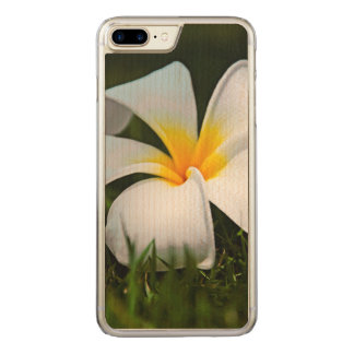 Flor branca de Havaí do Frangipani do Plumeria Capa iPhone 7 Plus Carved