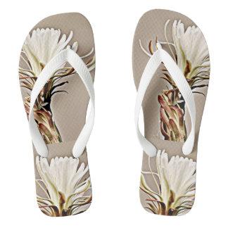 Flor branca do cacto nos chinelos das mulheres