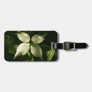 Flor branca do primavera da flor Sunlit do Dogwood Etiqueta De Bagagem