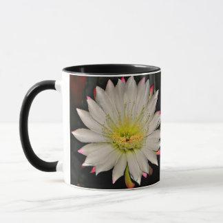 Flor branca e cor-de-rosa do cacto na caneca de