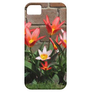 flor capa para iPhone 5
