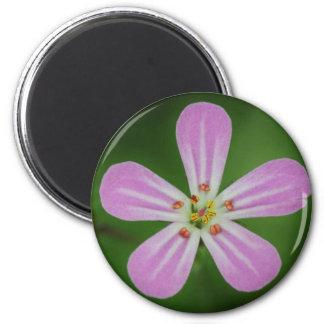 Flor cor-de-rosa bonita do cranesbill ima de geladeira