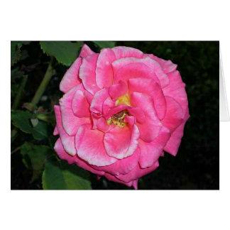Flor cor-de-rosa cartão comemorativo