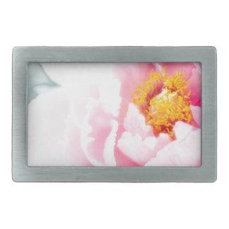 Flor cor-de-rosa chave alta da peônia
