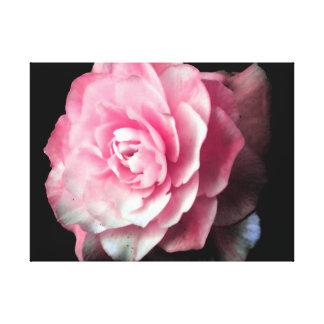 Flor cor-de-rosa com fundo preto impressão em tela