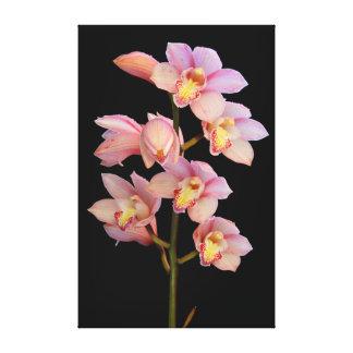 Flor cor-de-rosa da orquídea impressão de canvas esticadas