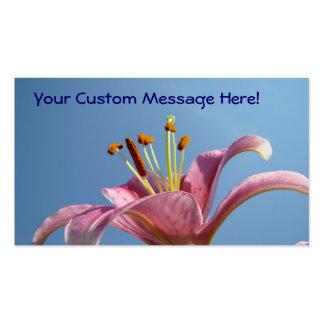 Flor cor-de-rosa do lírio dos cartões de visitas d