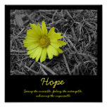 Flor da esperança posteres