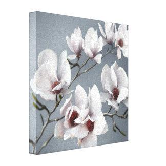 Flor da magnólia do primavera, rosa, brandamente c impressão em tela