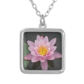 Flor de Ásia Lotus Bijuteria