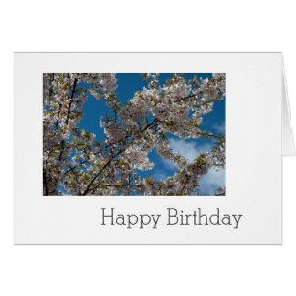 flor de cerejeira no céu azul. feliz aniversario cartão comemorativo