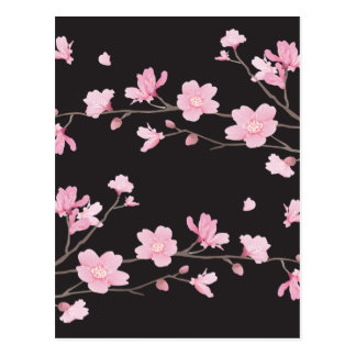 Flor de cerejeira - preto cartão postal