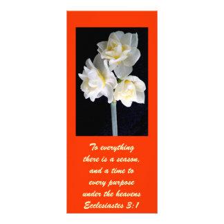 Flor de Jonquil - 3:1 de Ecclesiastes 10.16 X 22.86cm Panfleto
