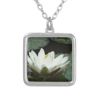Flor de Lotus branco Bijuteria