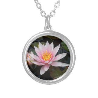 Flor de Lotus Colar