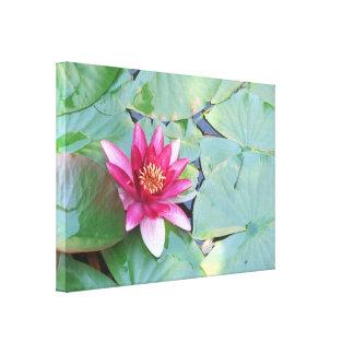 Flor de Lotus do lírio apenas você de água lagoa d Impressão De Canvas Esticadas