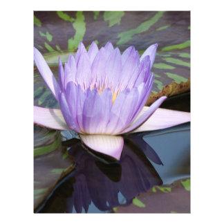 Flor de Lotus Modelo De Panfleto