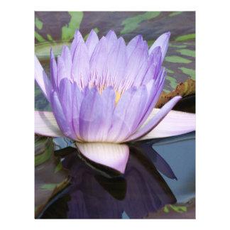 Flor de Lotus Modelos De Panfleto