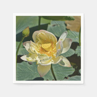 Flor de Lotus Guardanapo De Papel