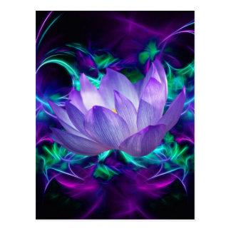 Flor de lótus roxa e seu significado cartão postal
