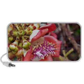 Flor de Sala da fruta da bala de canhão Caixinhas De Som Portátil