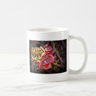 Flor de Sala da fruta da bala de canhão Caneca