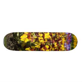 Flor do amor perfeito skate boards