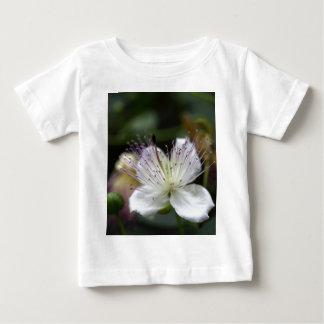 Flor do arbusto da alcaparra, Capparis spinos. T-shirts