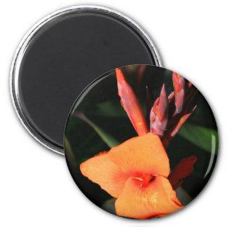 Flor do lírio de Canna Ímã Redondo 5.08cm