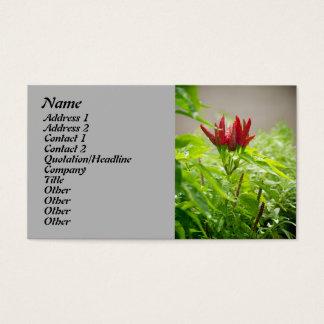 Flor do pimentão cartão de visitas