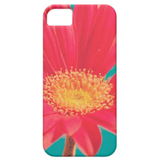 flor do vintage na capa de telefone capa para iPhone 5