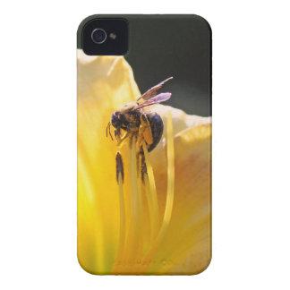 flor e abelha mf capinha iPhone 4