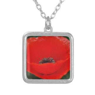 Flor e significado da papoila colar com pendente quadrado