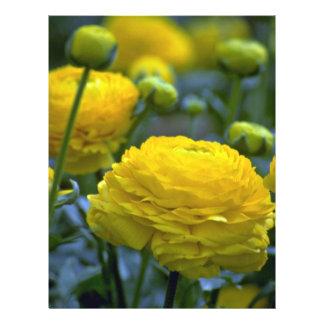 Flor encaixotada escada modelos de panfleto
