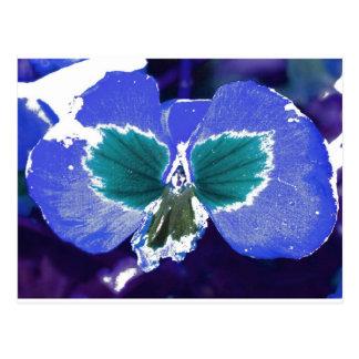 Flor feericamente escondida cartão postal