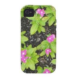 flor-fundo capas para iPhone 4/4S