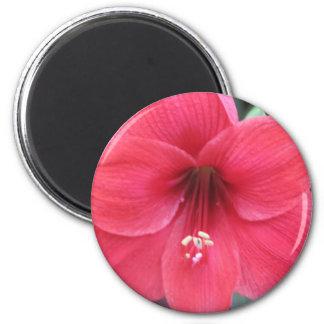 Flor Ímã Redondo 5.08cm