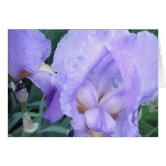 Flor - íris cartão comemorativo