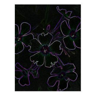 Flor mágica cartão postal