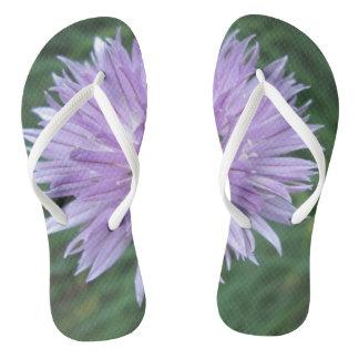 Flor magro adulta dos chinelos da correia
