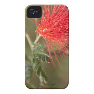 Flor mf 125 capas para iPhone 4 Case-Mate