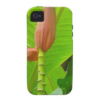 Flor mf 489 capinhas para iPhone 4/4S