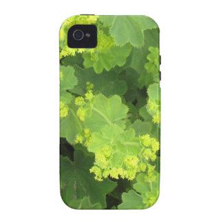 Flor mf 566 capa para iPhone 4/4S