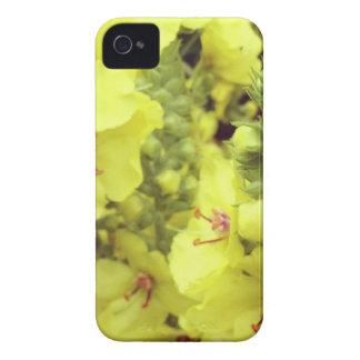 Flor mf capinha iPhone 4