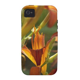 Flor mf capa para iPhone 4/4S